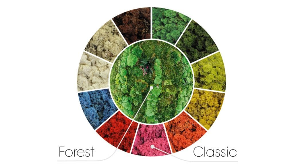 Forest oder Classic